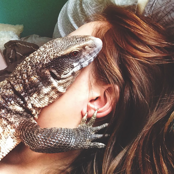 cute-lizard-pet-cuddles-savannah-monitor-astya-lemur-4