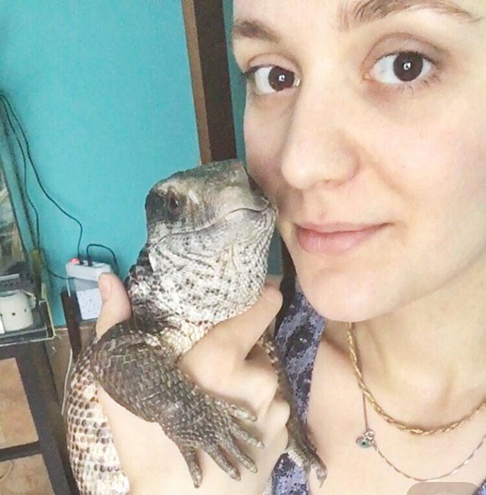 cute-lizard-pet-cuddles-savannah-monitor-astya-lemur-49