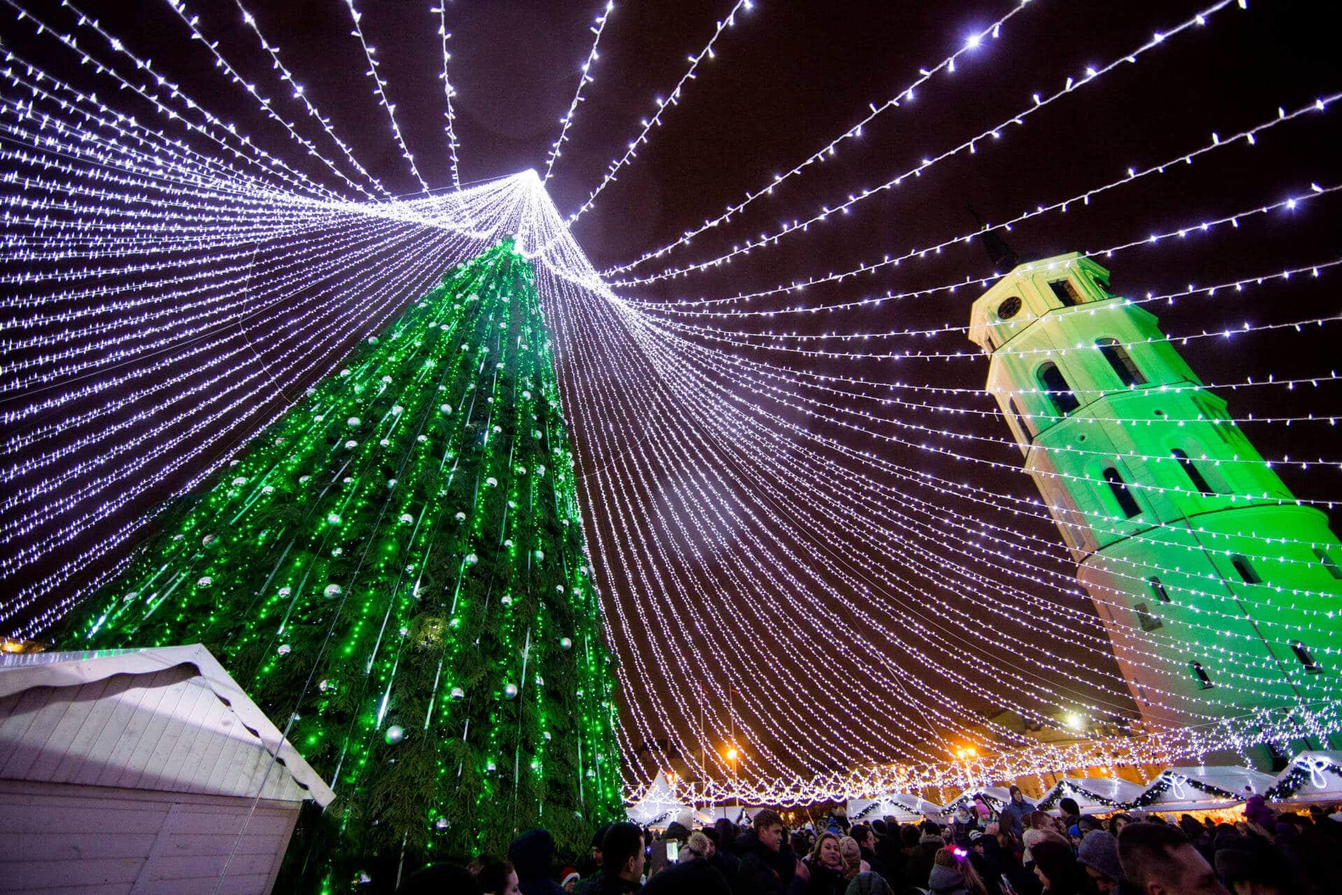 Рождественская елка освещенная 50000 лампочками открывает праздничный сезон в Вильнюсе